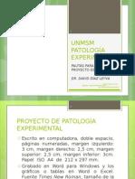Proyecto de Patologã--A Experimental - Pautas