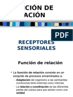 PRESENTACION RECEPTORES sensoriales