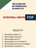 A. Obstruksi Usus
