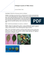 Details of Magrove Species of Vellar