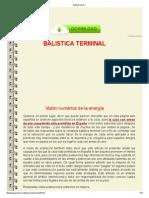 balistica terminal de las armas de aire.pdf