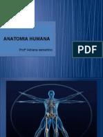 1 - Anatomia Humana - Geral
