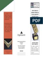 Formato Triptico Torneo en PDF