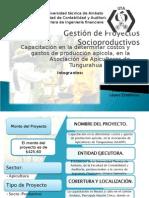 Proyecto Socio-Productivo.