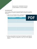 Guía 3. Diversidad celular I.doc