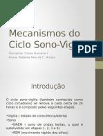 Mecanismos Do Ciclo Sono-Vigília
