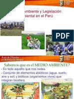 EXPO N° 05 -  Legislacion Ambiental