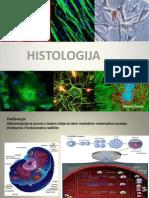 Histologija-vezbe 2013