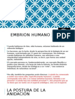 Embrion Humano