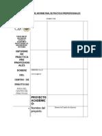 FP10_InformeFinalDePPI