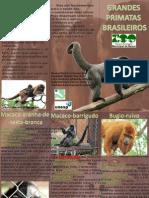 Grandes Primatas Brasileiros