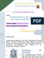 salmuera (1).pptx