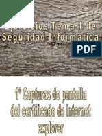 Ejercicios Tema 1 de Seguridad Informatica
