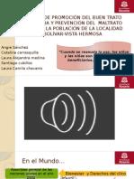 presentacion-pyp