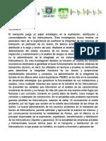 Proyecto itesco