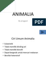 ANIMALIA Bag 1 Avertebrata
