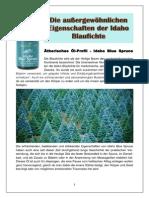 Die Außergewöhnlichen Eigenschaften Der Idaho Blaufichte-1
