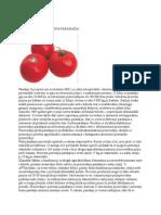 Savremena proizvodnja paradajza
