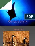 Concurs Bibilic 3