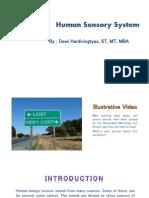 P2 - Ergo - Human Sensory System