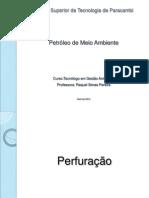 4-perfurac3a7c3a3o.pdf