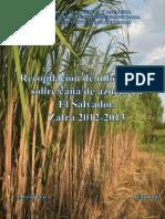 Manual Caña de Azucar 2012-2013