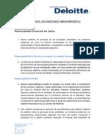 Dictamen Auditoria Ambiental