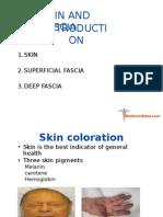 Skin and Fascia_MedicosNotes.com