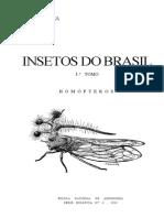 Insetos Do Brasil Pdf