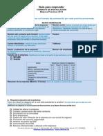 GUIAMEJORESPRACTICAS2013.pdf