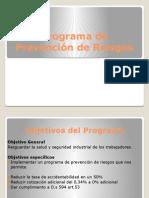 Programa de Prevención de Riesgos Romi (1)