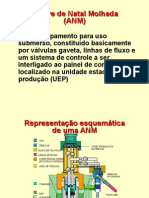 ANM_completo.ppt