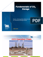 Fundamentals of CO2 Storage