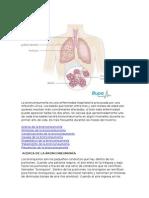 La Bronconeumonía Es Una Enfermedad Respiratoria Provocada Por Una Infección Vírica