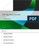 SAP Big Data Overview.ppt