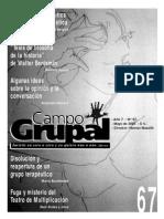 CAMPO GRUPAL 67