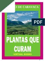Plantas Curam