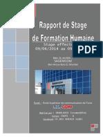 rapport_final.pdf