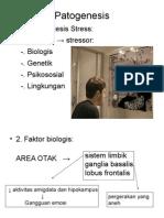 Patogenesis Schizophrenia.ppt