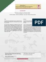 pdf_EJVS_888.pdf