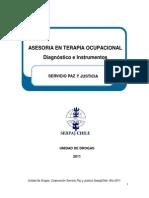 Asesoría en Terapia Ocupacional - Diagnóstico e Instrumentos (SERPAJ)