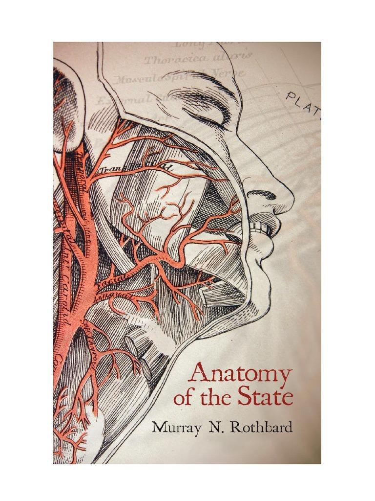 Excelente Anatomía Del Estado De Michigan Festooning - Anatomía de ...