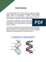Ácido Nucleico