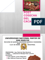 Manejo Postcosecha Del Cacao