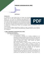 SEGURIDAD CIUDADANA.doc