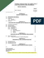 Estructura Informes Trabajo Final de Campo 2015 (1)