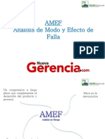 AMEF-Resumen