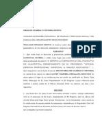 Memorial Sol. Guarda y Custodia WILLIAM ESPINO