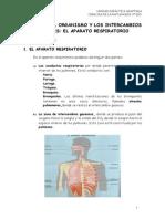u05 El Aparato Respiratorio