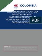310513 Indigenas Instrumentos Unidad CORREGIDO 190613